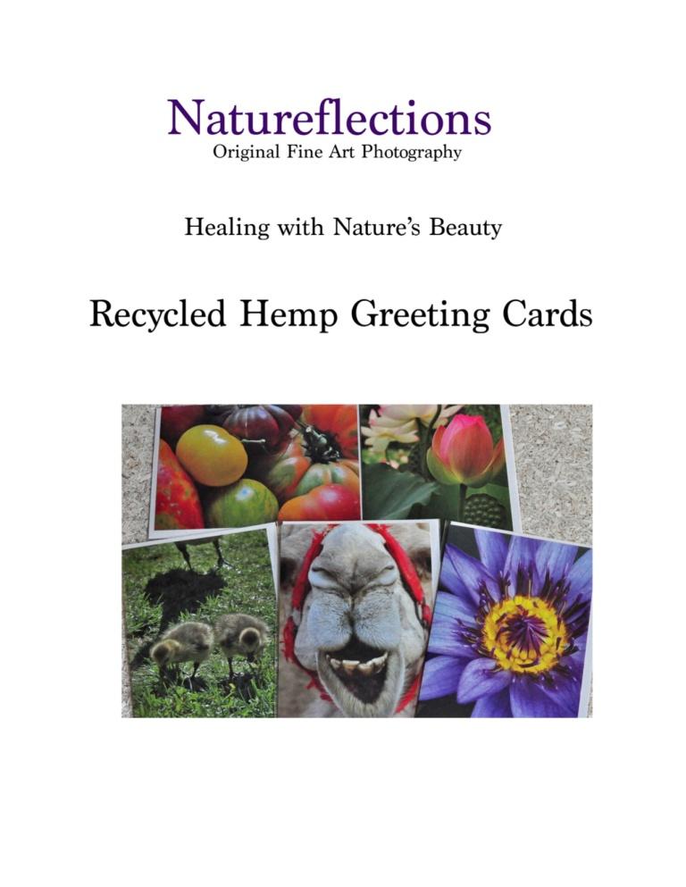 Hemp Greeting Card Catalog