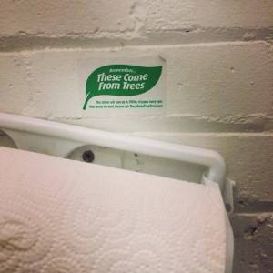 trees_towels